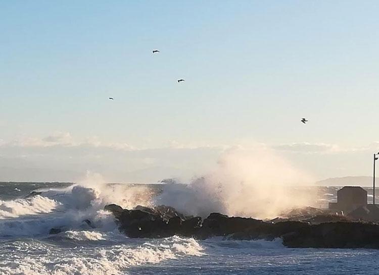 winter-winds